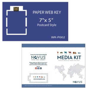 """Paper Web Key 7"""" x 5"""" Postcard"""