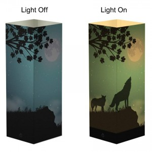 Night Light Lamp with Custom Full Color Paper Cover